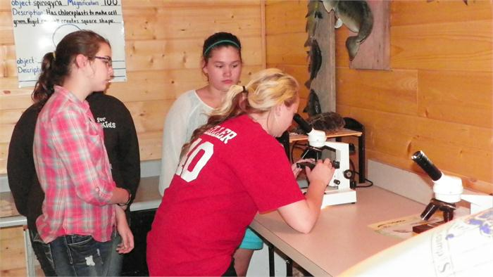 Kendall helps a group find a living organism to look at through the microscope.
